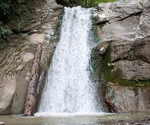 cascada pruncea